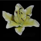 Lemon Yellow Real Touch Oriental Lily Flower Head