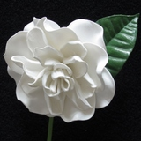 White Real Touch Gardenia Flower Head