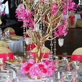 Crystal Manzanita Wedding Tree Centrepiece DIY Kit