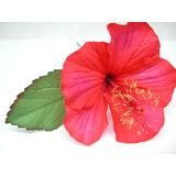 Real Touch Hibiscus Flower Head
